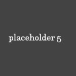 Placeholder 5